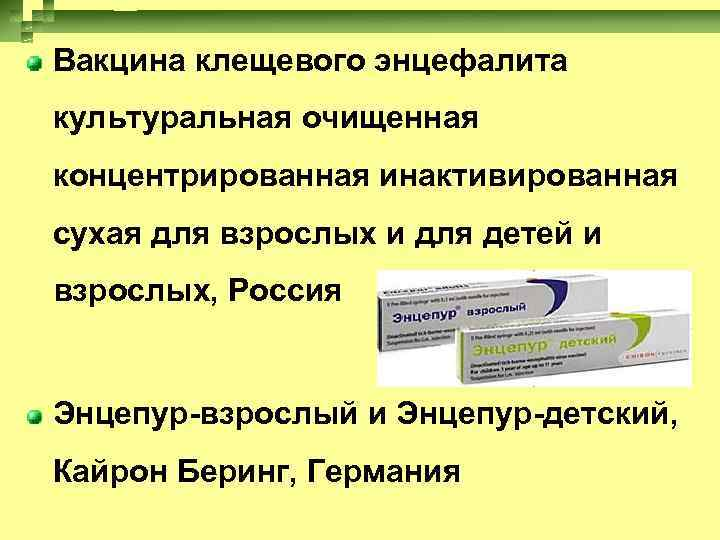 Прививка от клещевого энцефалита - причины, симптомы, профилактика