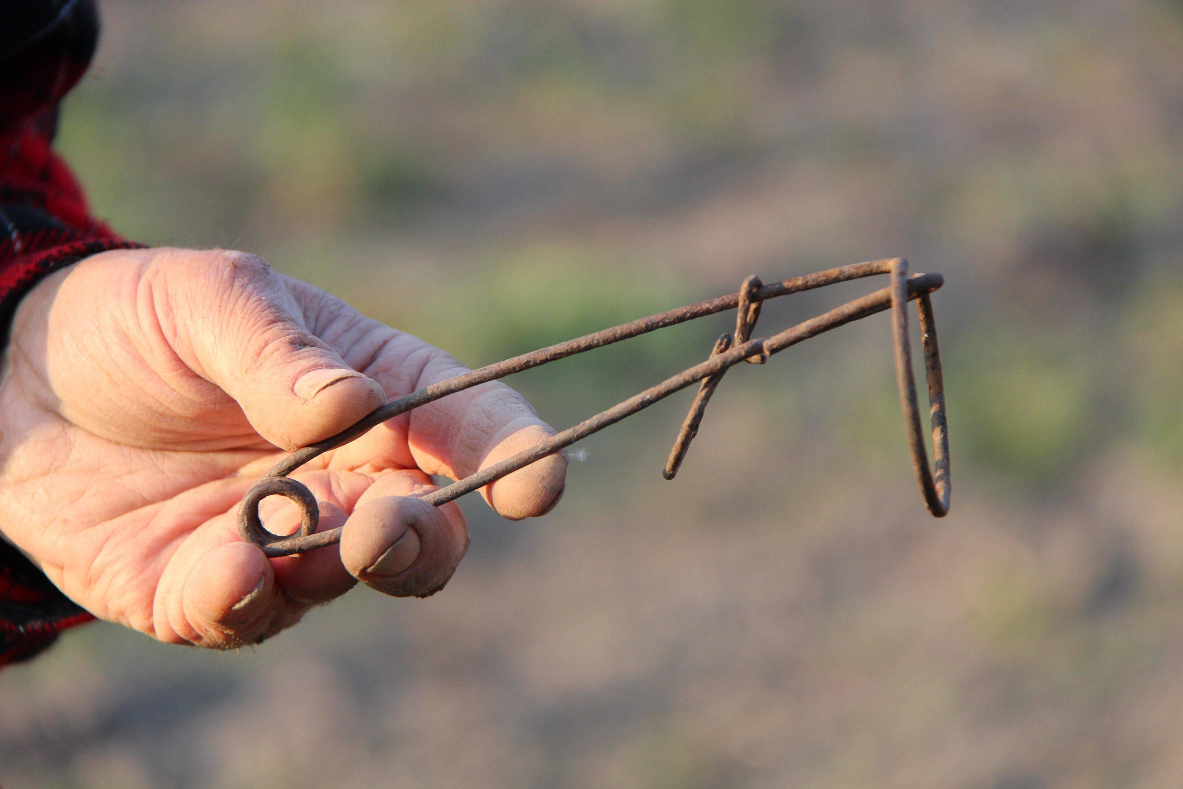 Как поймать крота на огороде