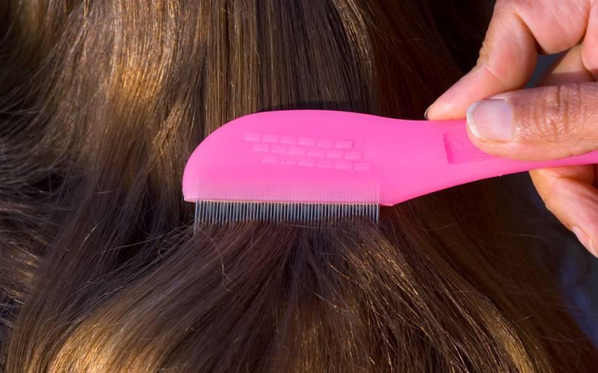 Как быстро вывести вшей и гнид у ребенка в домашних условиях: длинные и короткие волосы