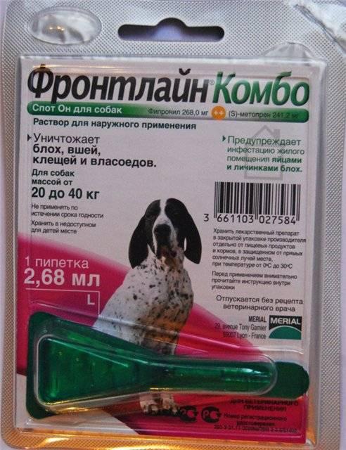 Фронтлайн для кошек: спрей и капли от паразитов, инструкция по применению