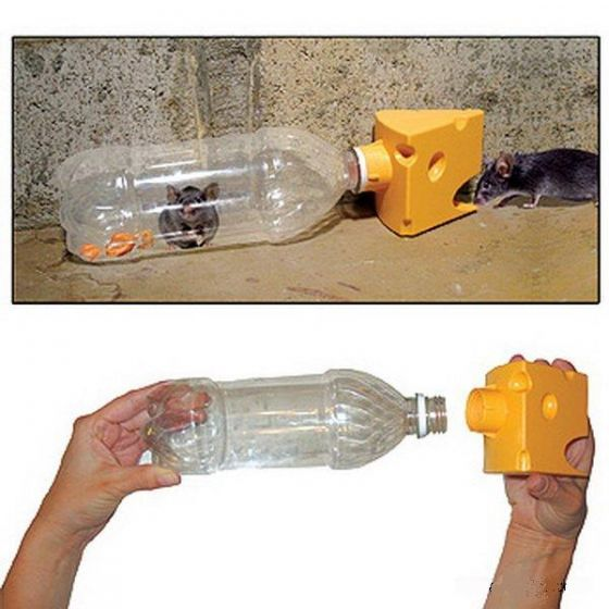 Мышеловка своими руками из пластиковой бутылки: пошаговая инструкция мышеловка своими руками из пластиковой бутылки: пошаговая инструкция