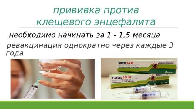 Прививка от энцефалитного клеща: когда ставить, особенности вакцинации