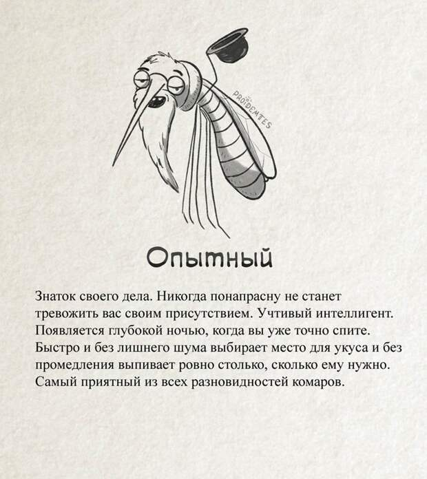Интересные факты о комарах, или за что уважать кровососа