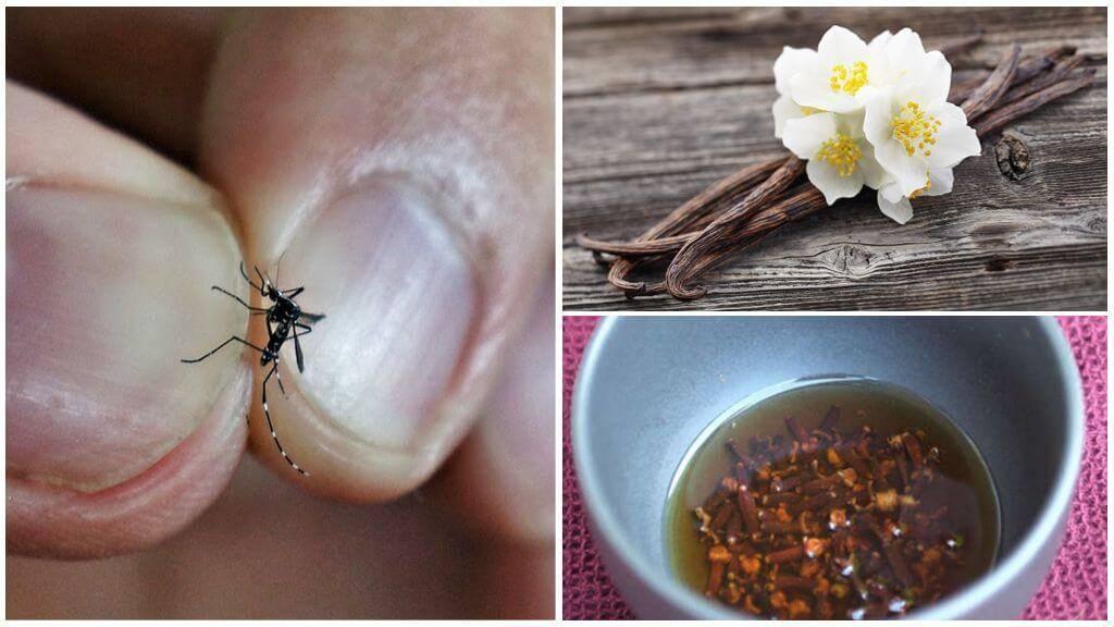Народное средство от комаров и мошек на природе