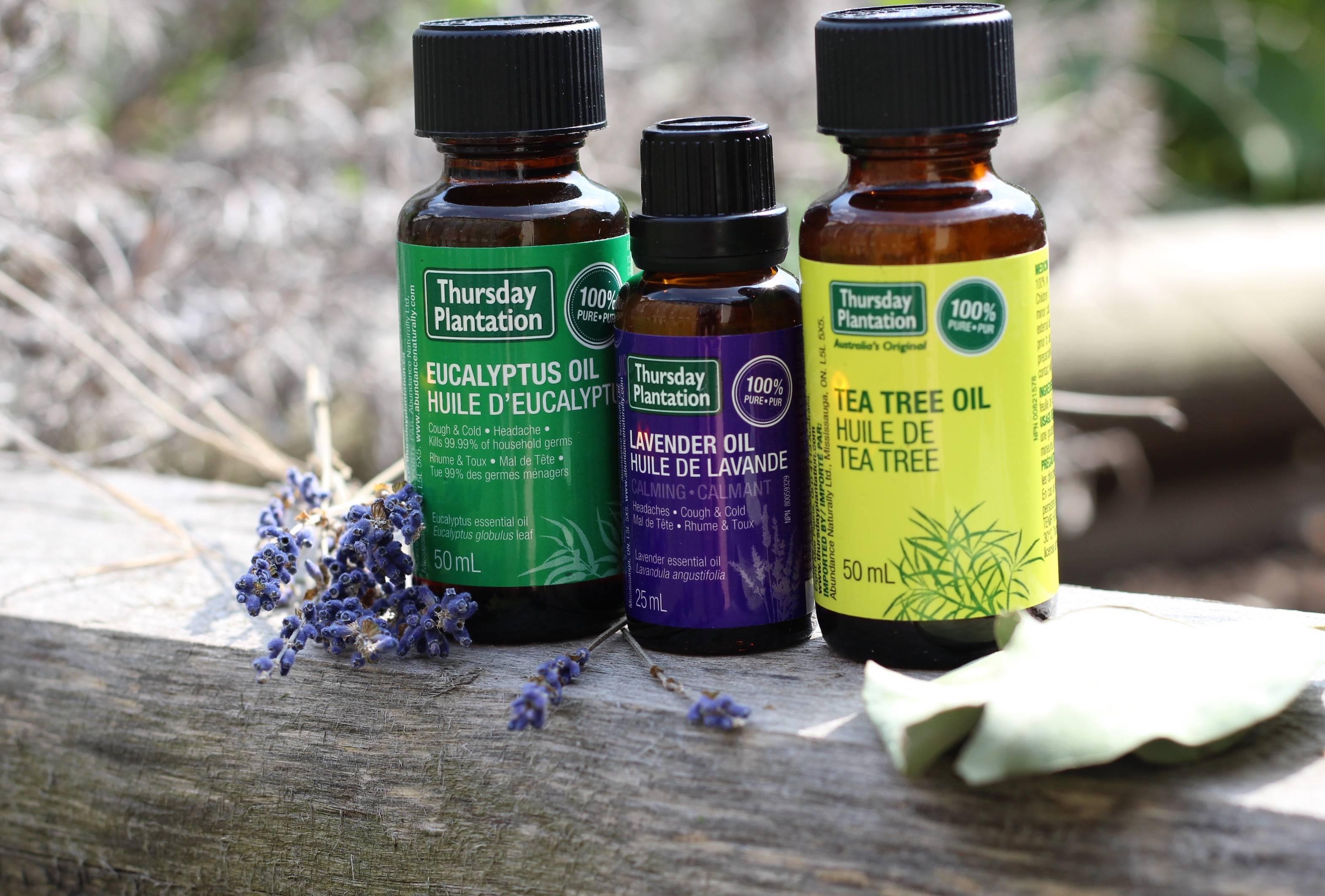 Эфирные масла для защиты от клещей: какие выбрать, как применять, рецепты для взрослых, детей и животных