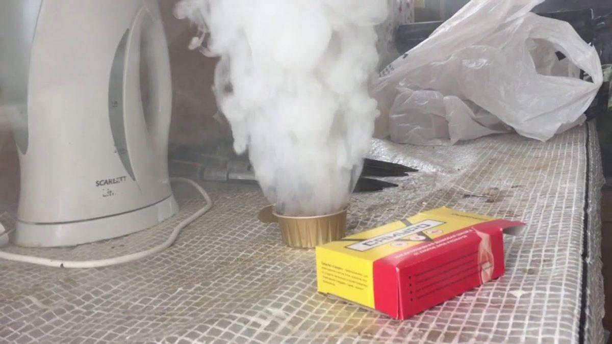Как правильно травить клопов дымом
