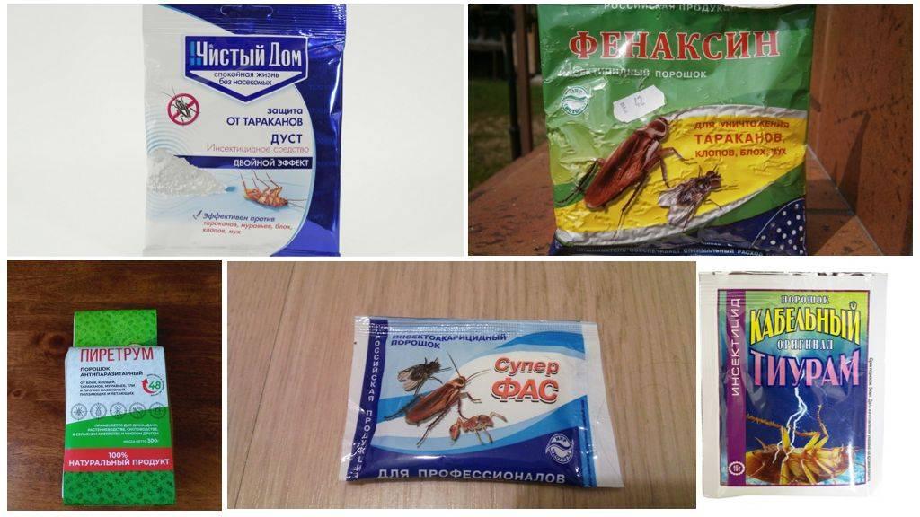Порошок тиурам против тараканов