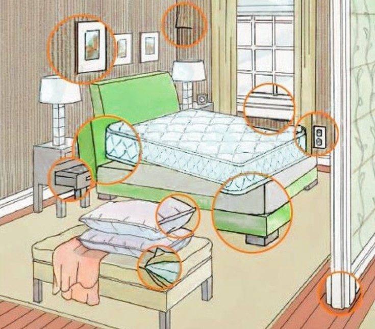 ❶ сколько живут постельные клопы без │ еды │ крови человека │в пустой квартире