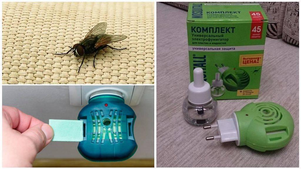 Фумигатор раптор от тараканов: инструкция, эффективность и отзывы пользователей