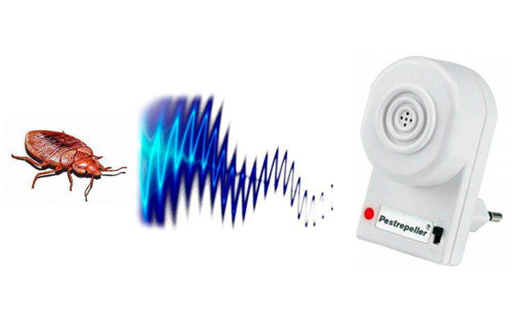 Ультразвуковые отпугиватели клопов – помогает ли ультразвук?