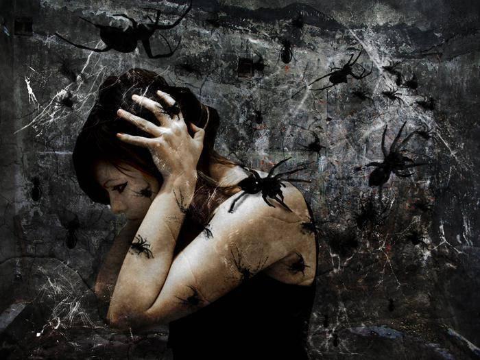 Как перестать бояться пауков: методы самопомощи