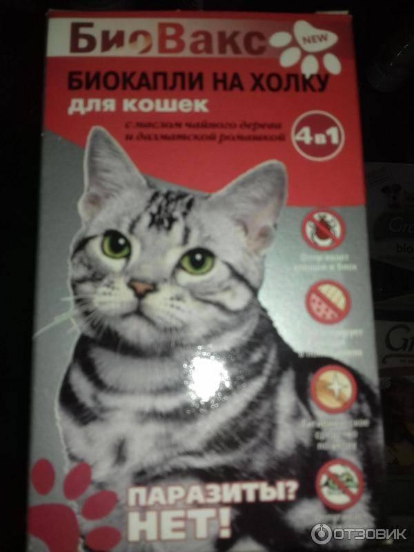 Спрей для кошек отпугивающий, чтобы не царапали мебель и обои: обзор отпугивателей для котов