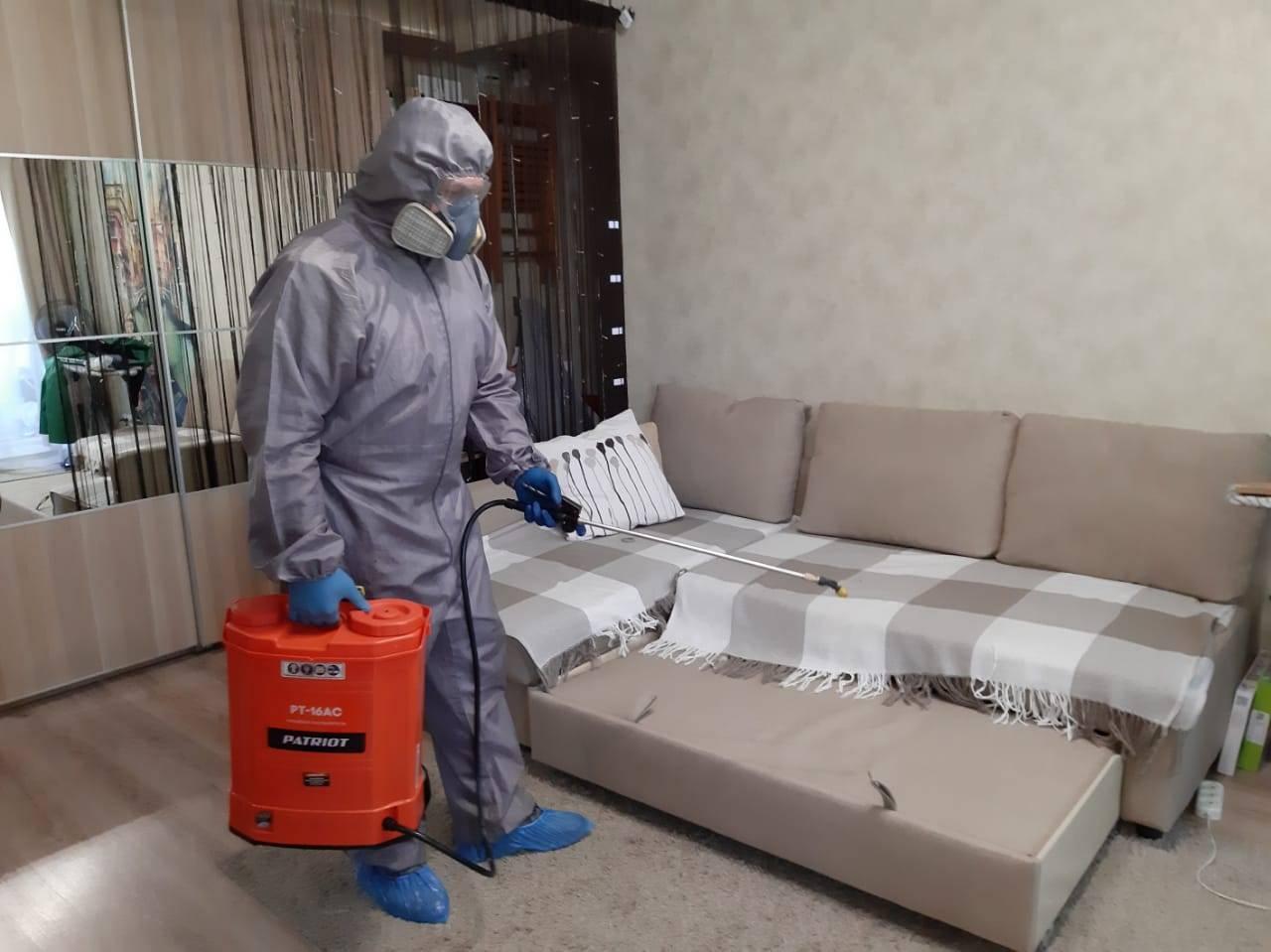 Как избавиться от клопов в диване, народные методы, химикаты