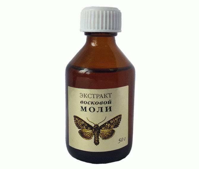Восковая моль — лечение. экстракт личинок восковой моли. применение и приготовление настойки