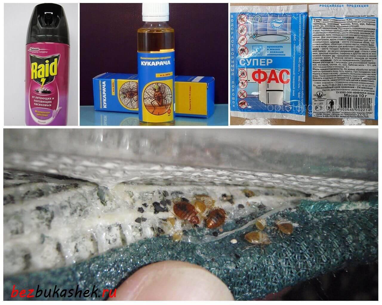 Средство от клопов без запаха – эффективный препарат с учетом пожеланий покупателей