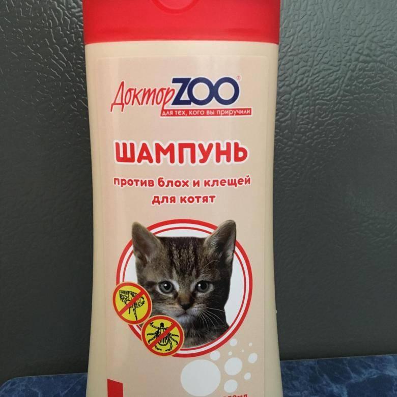 Топ-10 лучших шампуней для кошек и котов | +отзывы