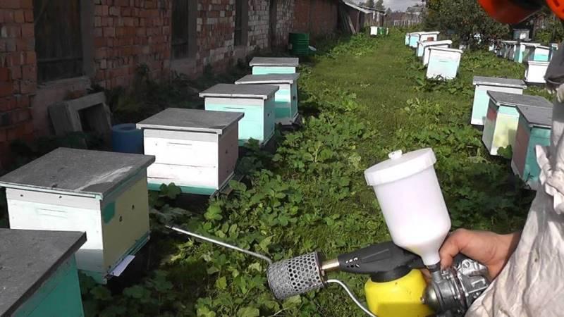 Как и когда обрабатывать пчел бипином?