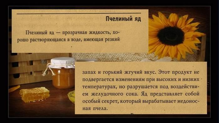 Пчелиный яд: свойства, польза и вред