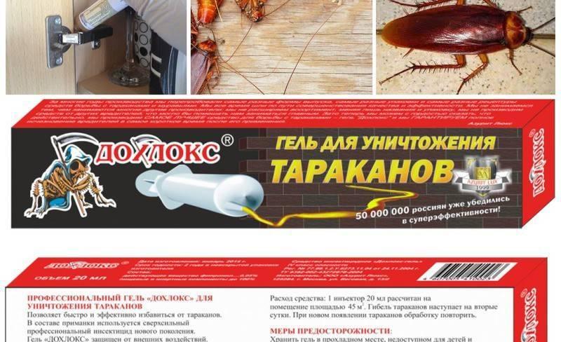 Рейтинг эффективных средств для уничтожения тараканов в квартире