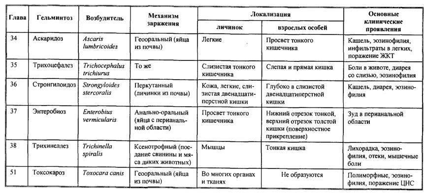Нематода, или спасайся кто может! меры борьбы. фото — ботаничка.ru