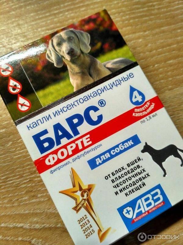 Барс форте для щенков и взрослых собак: инструкция, отзывы