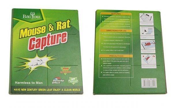 Клей от мышей чем отмыть