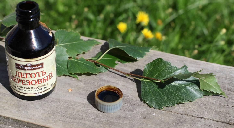 Березовый деготь от муравьев в саду и огороде