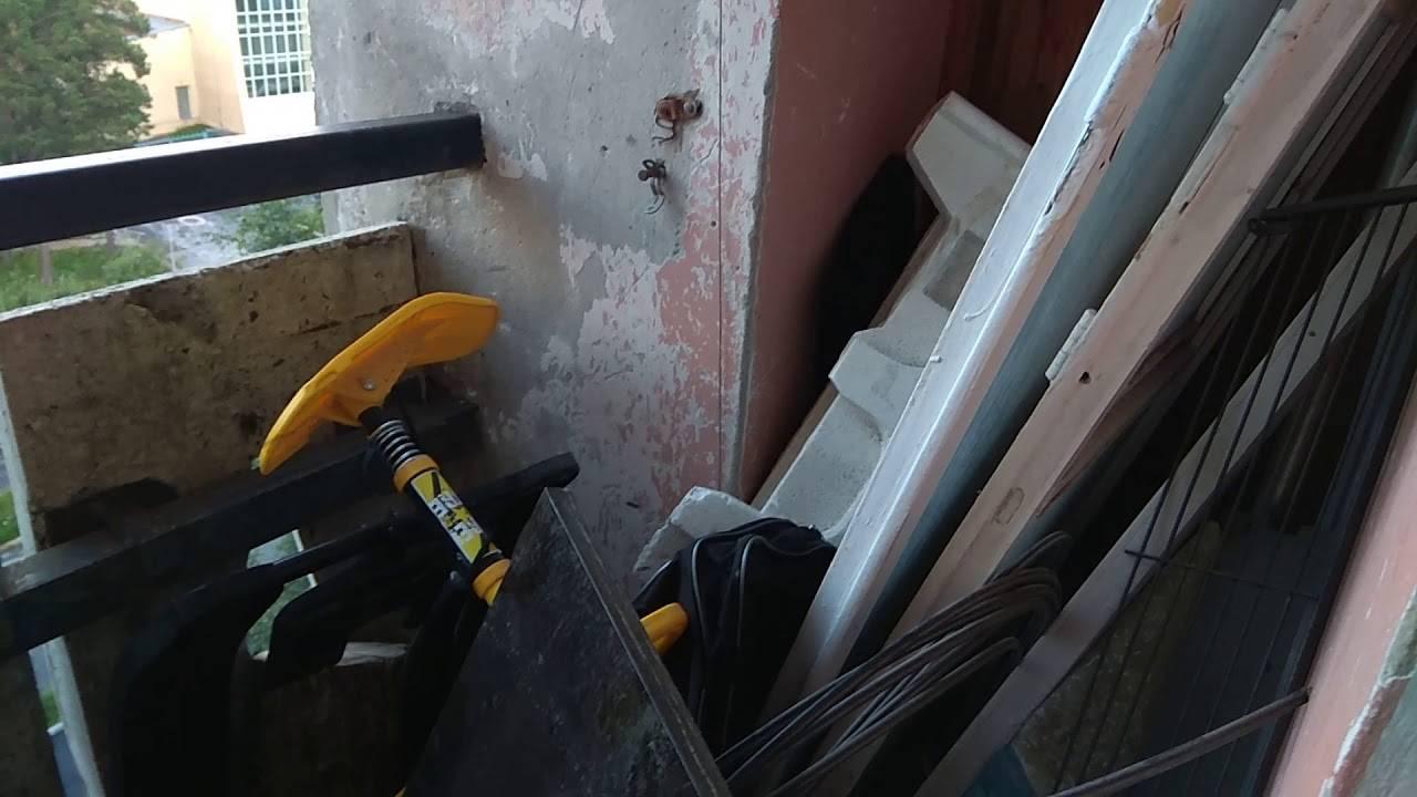 Как избавиться от ос и осиного гнезда на даче в недоступном месте, народными средствами и химией
