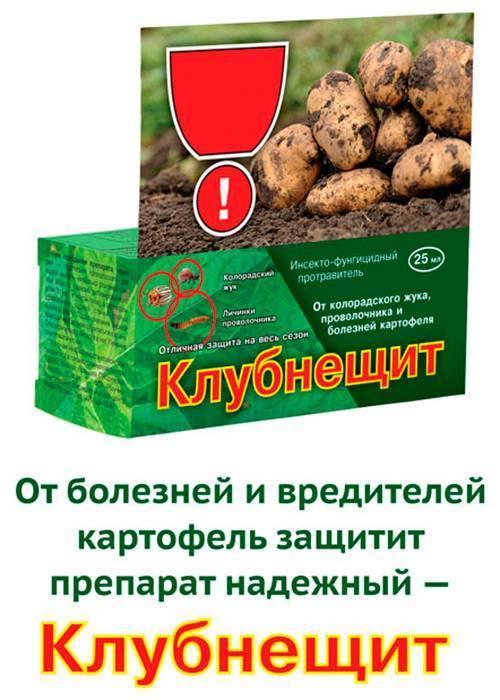 Методы борьбы с проволочником на картофеле