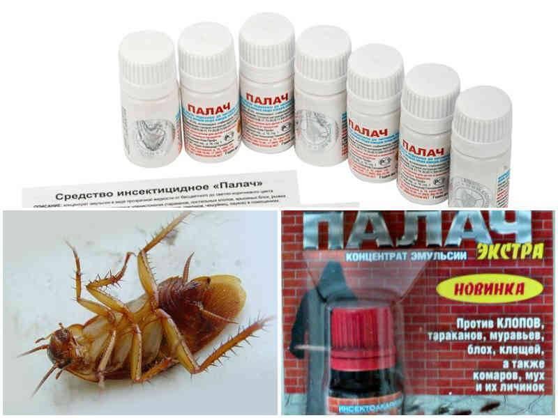 Палач от тараканов: инструкция по применению средства, отзывы