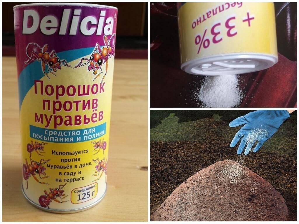 Эффективные средства от муравьёв в доме и квартире: народные, химические, электронные