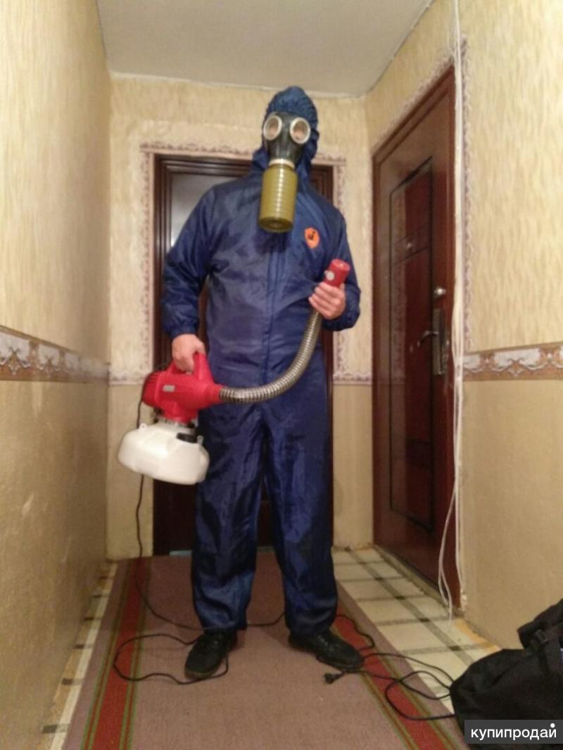 Уничтожение насекомых при помощи холодного тумана — описание метода