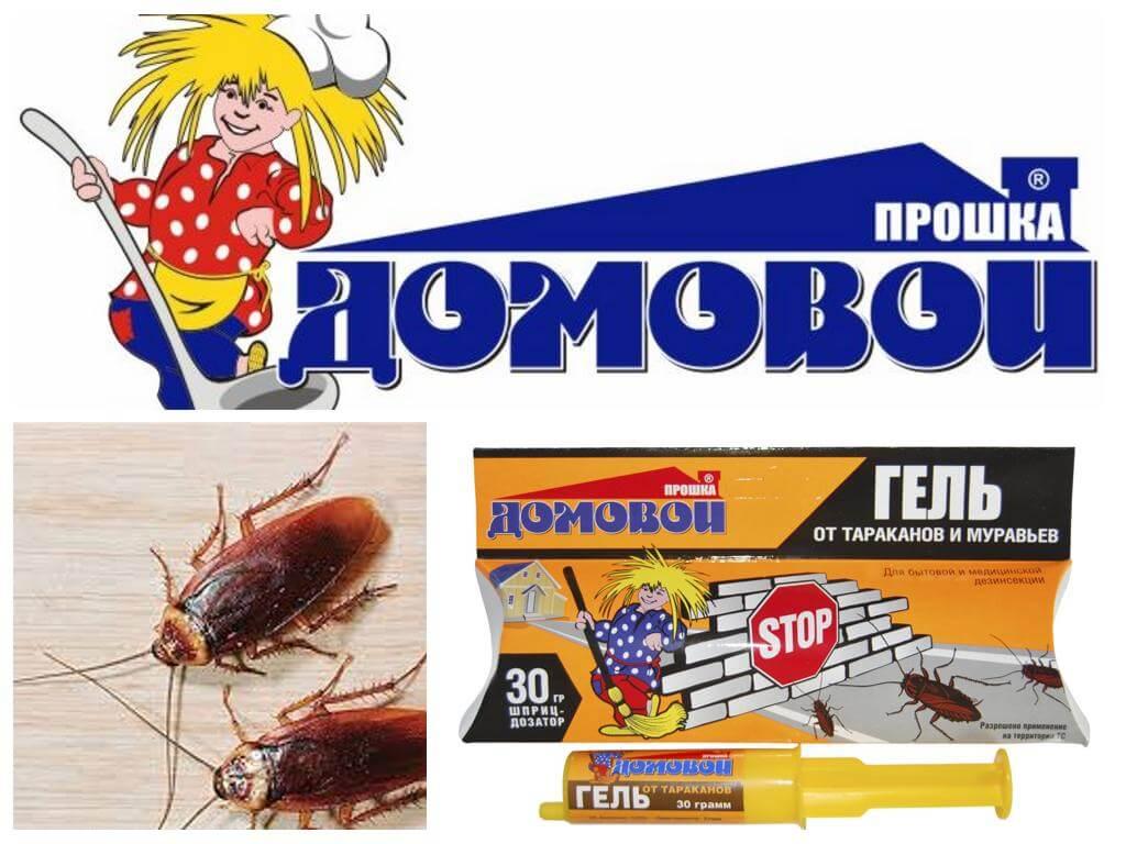 Гель от тараканов домовой — состав, полезные свойства и инструкция