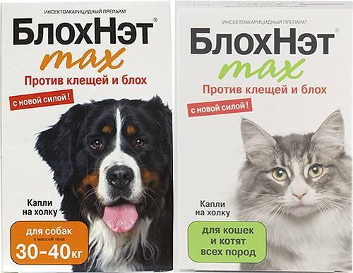 Средство от ушного клеща у кошек и собак блохнэт: инструкция по применению