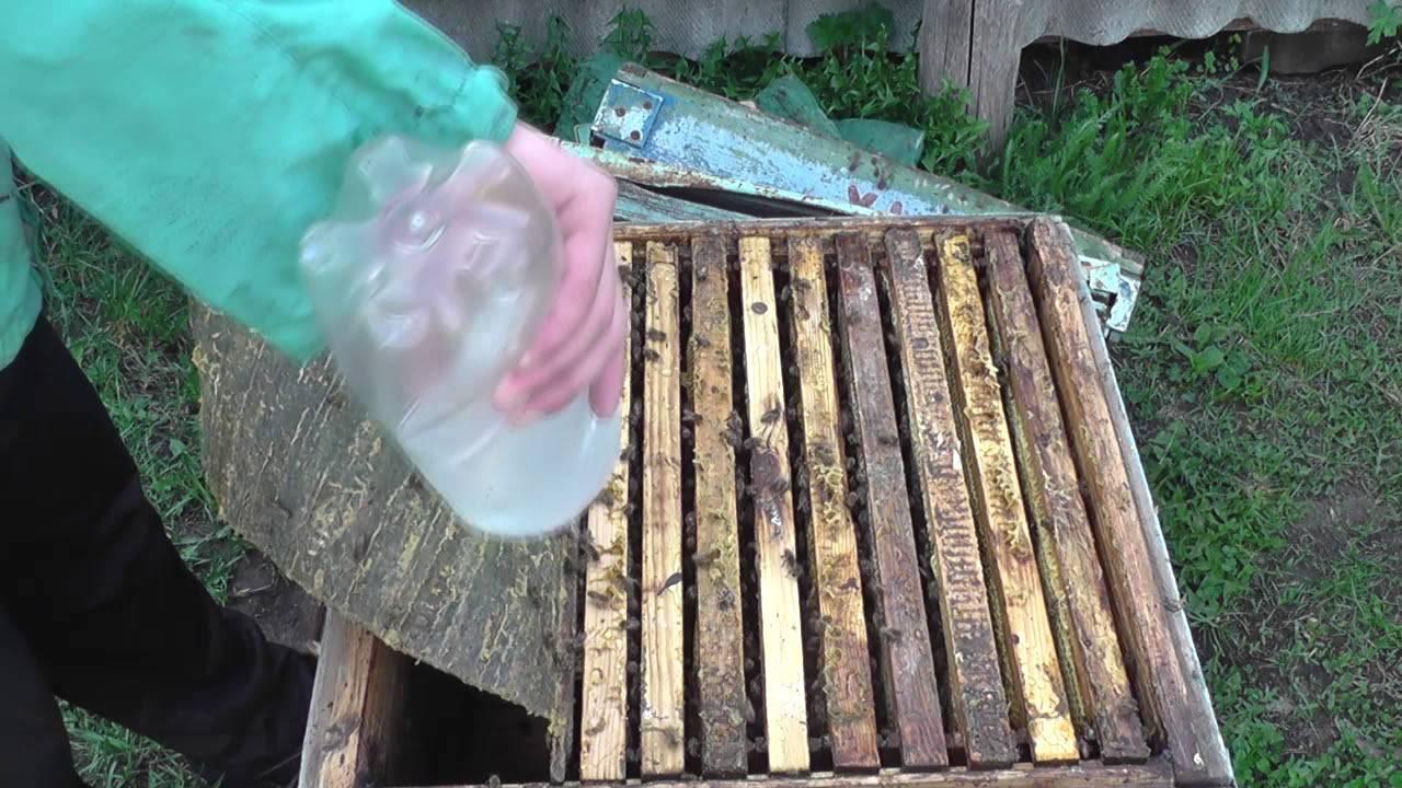 Бипин для пчел от клеща - инструкция, дозировка, как разводить, когда обрабатывать