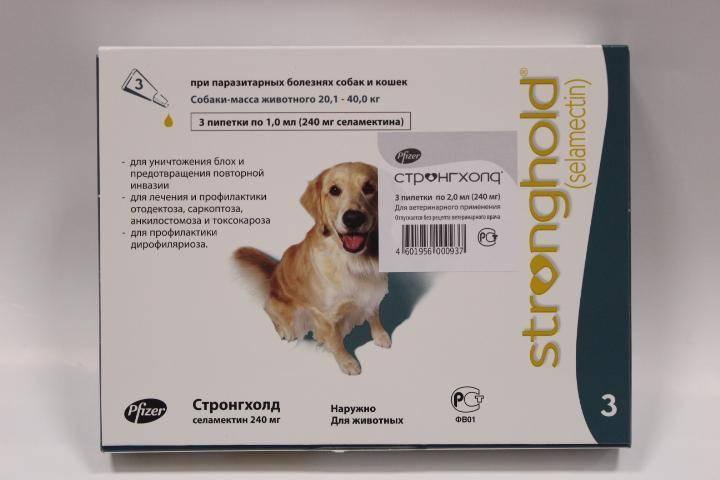 Стронгхолд для кошек и собак: инструкция по применению, описание, противопоказания, побочные действия   препараты   наши лучшие друзья