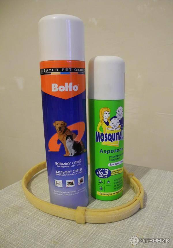 Инсектициды от блох: спреи для обработки помещений от блох и тараканов, аэрозоли от блох для кошек и собак