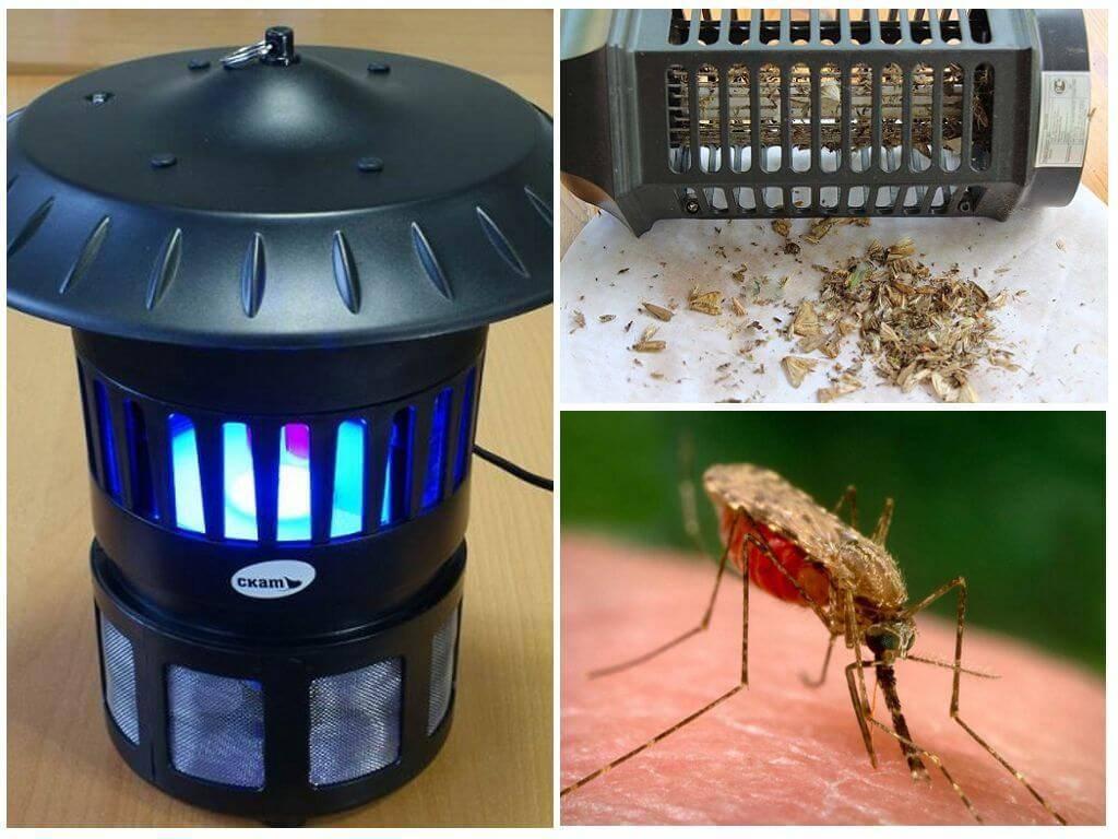 Лампа от комаров для улицы и дома: виды, советы по выбору