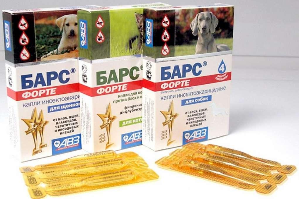 Прививка от клещей для собак │как называется препарат? │зачем  делать прививку от блох и клещей?