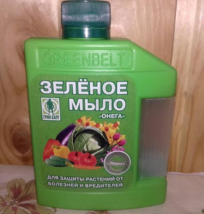 Зеленое мыло - инсектицид от вредителей, инструкция, применение, рецепты