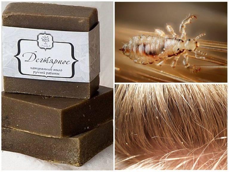Дегтярное мыло против вредителей: использование и отзывы