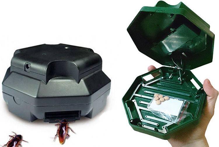 Ловушки для тараканов – самые эффективные изделия своими руками без особых навыков