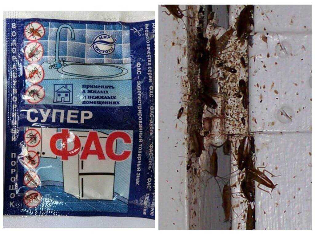 Фас от тараканов - использование порошка, таблеток, геля в домашних условиях