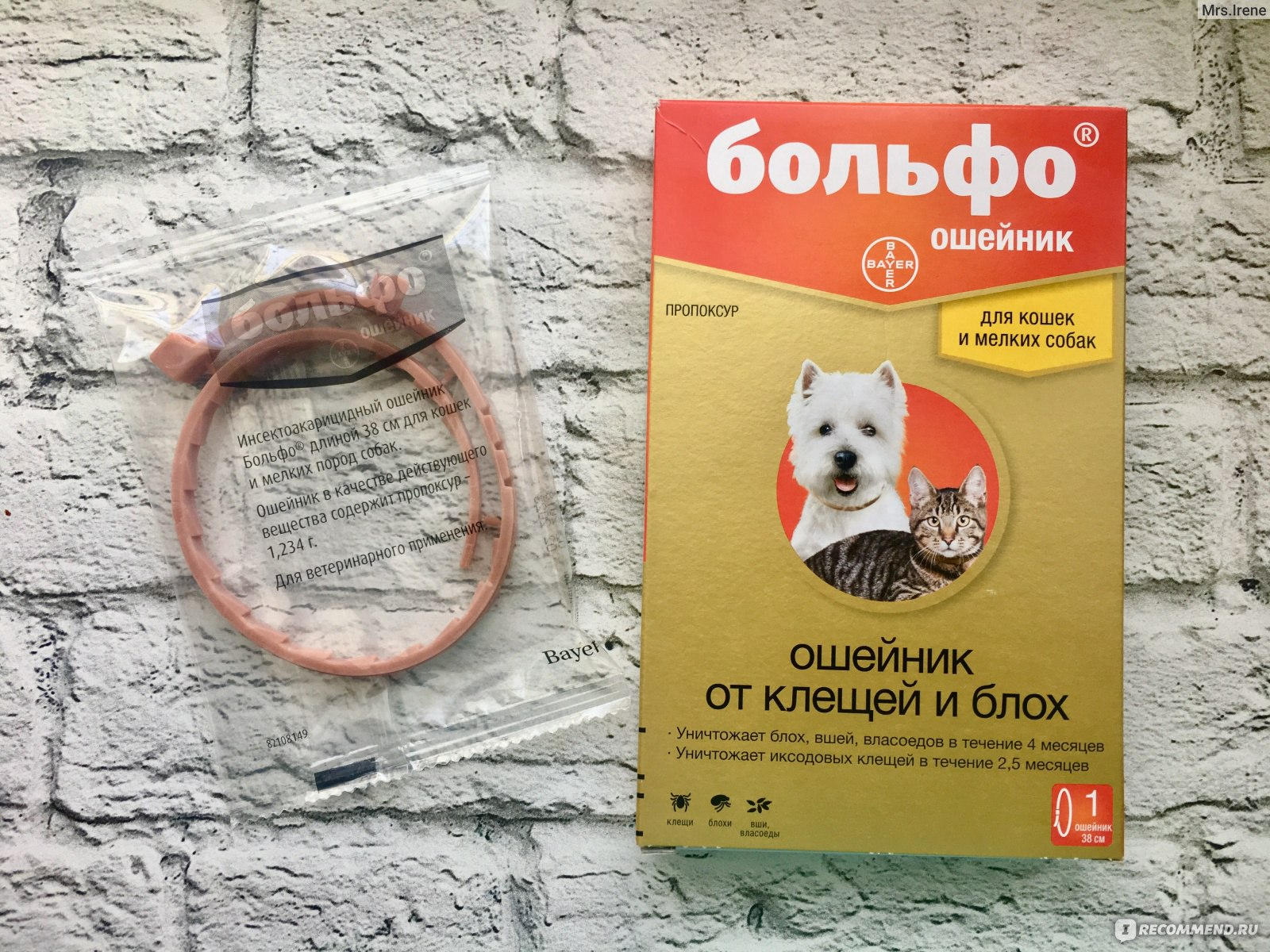Ошейник от клещей и блох для собак: рекомендации по выбору