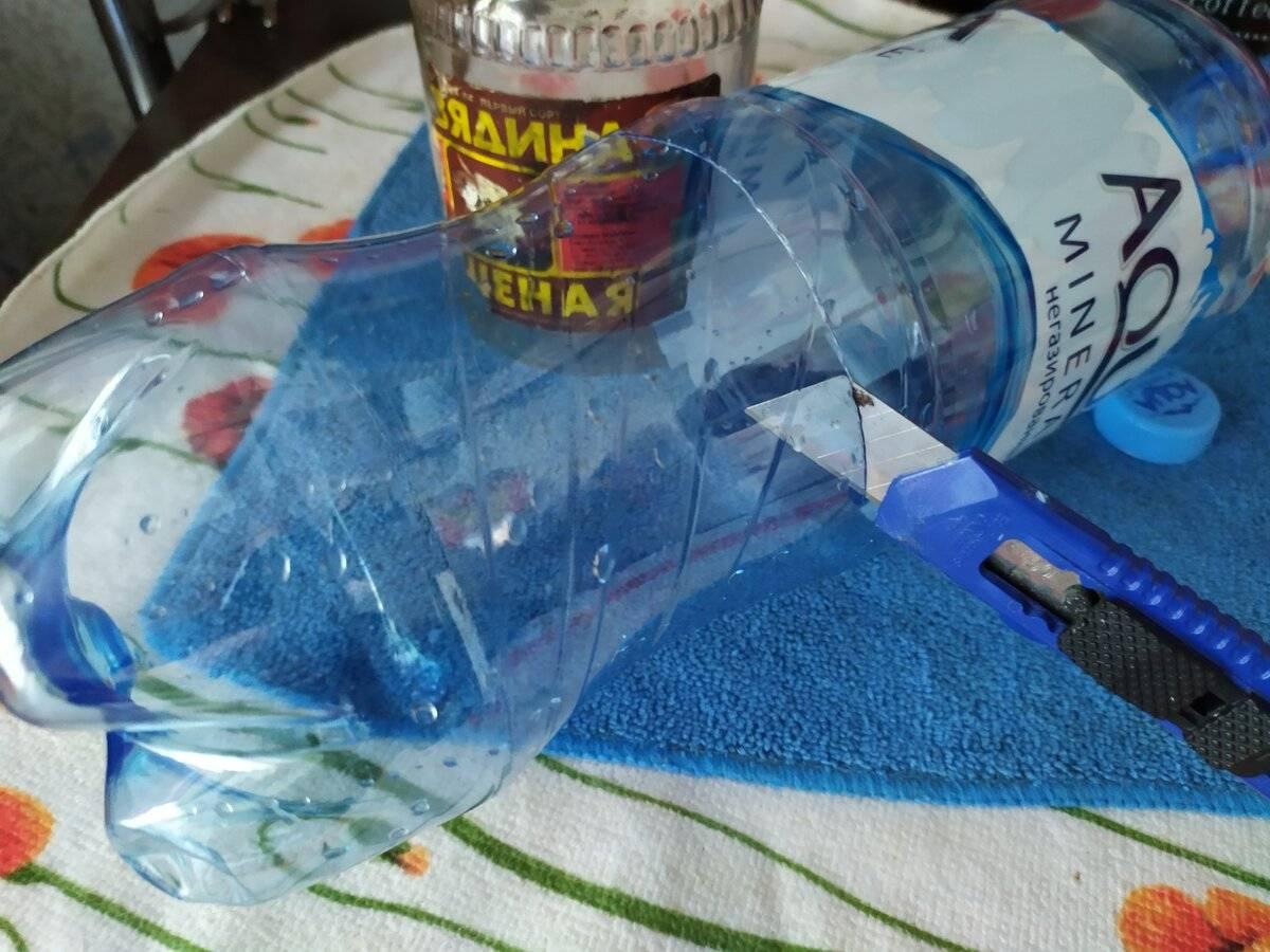 Мышеловка из пластиковой бутылки своими руками: освещаем по полочкам