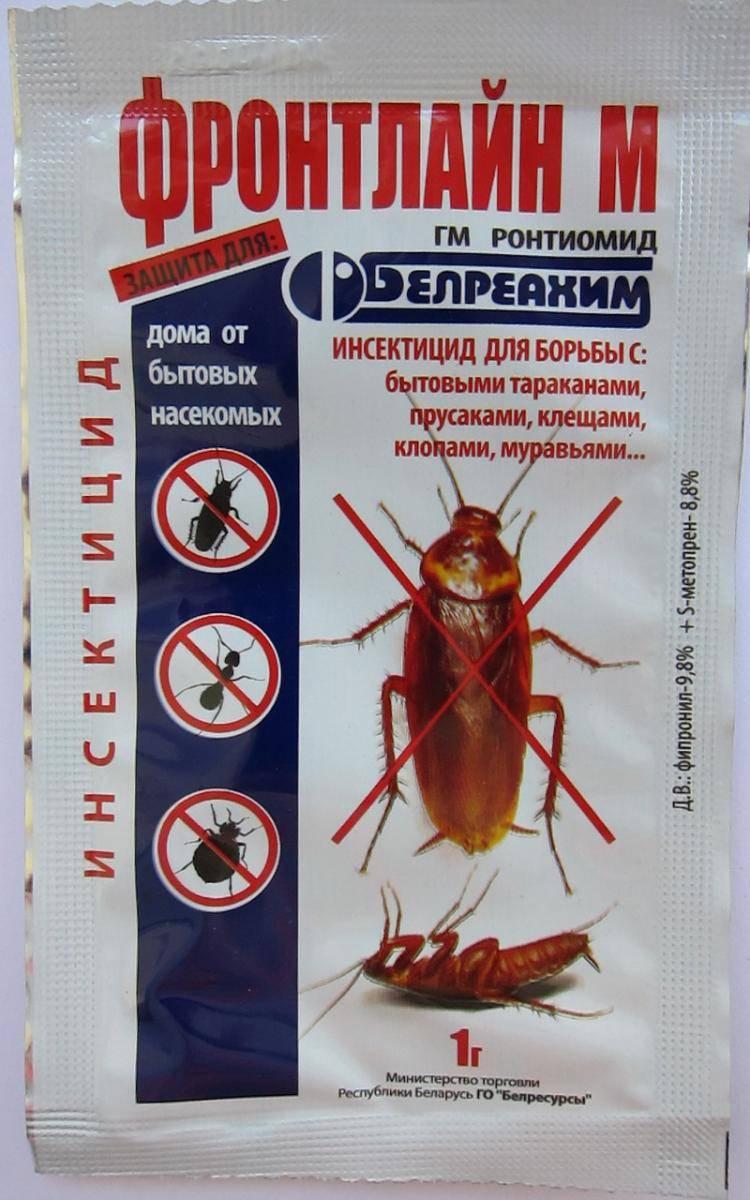 Дуст от тараканов: советы по борьбе и способ применения