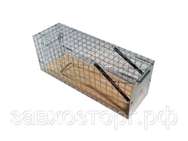 Крысоловки - рейтинг лучших устройств для ловли крыс, отзывы