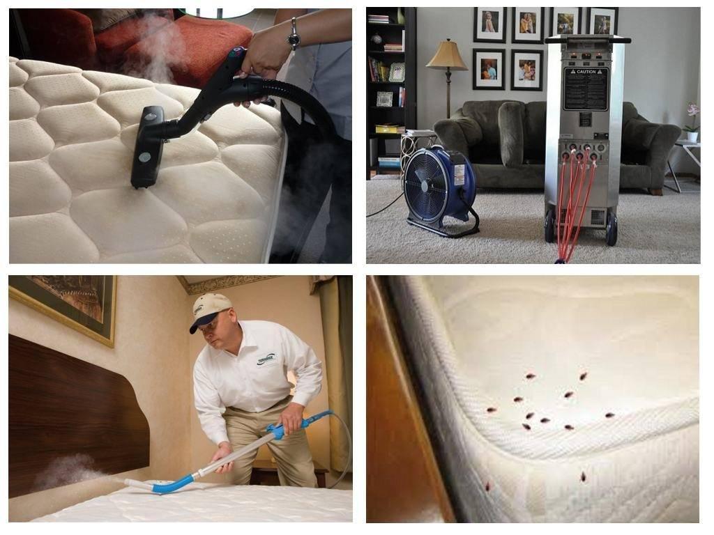 Как избавиться от клопов в квартире в домашних условиях