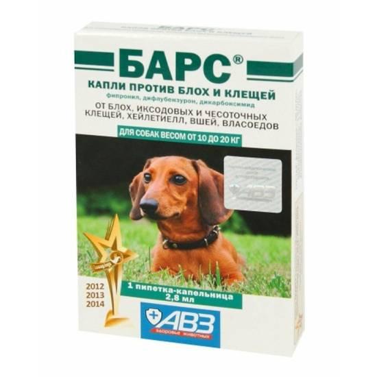 Лучшие капли на холку для собак от клещей и блох: обзор средств и принцип использования