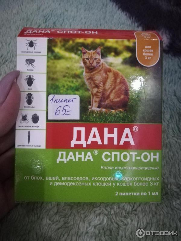 Api-san дана ультра капли инсектоакарицидные на холку для котят и кошек до 4 кг от 117 р.